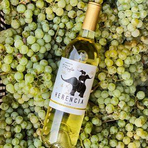 Botella de Herencia Blanco sobre uvas verdes.