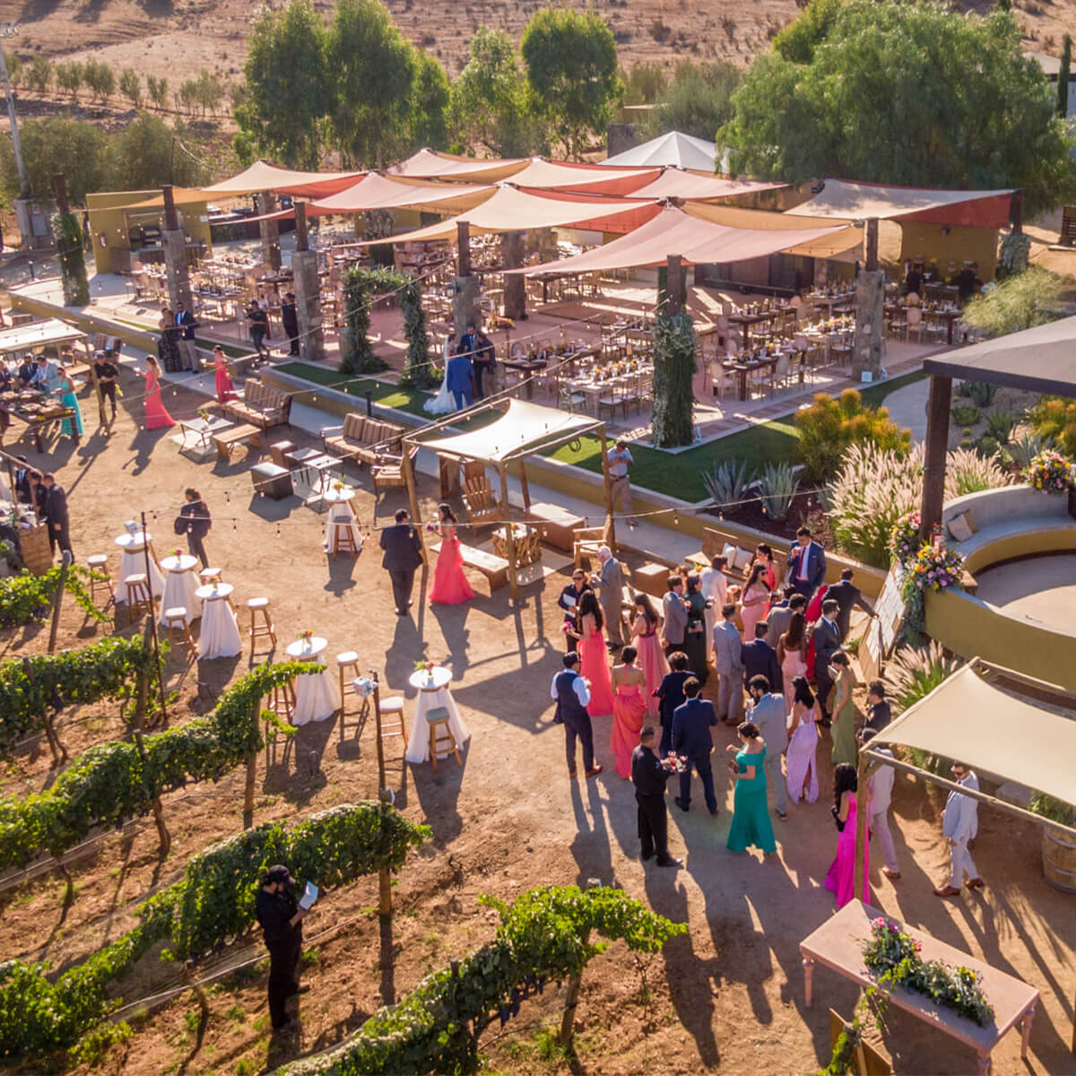 Evento de boda en la terraza de Bodegas F. Rubio.