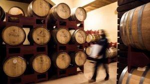 Ahora sí, aquí van unos simples pasos para aprender a catar un vino: