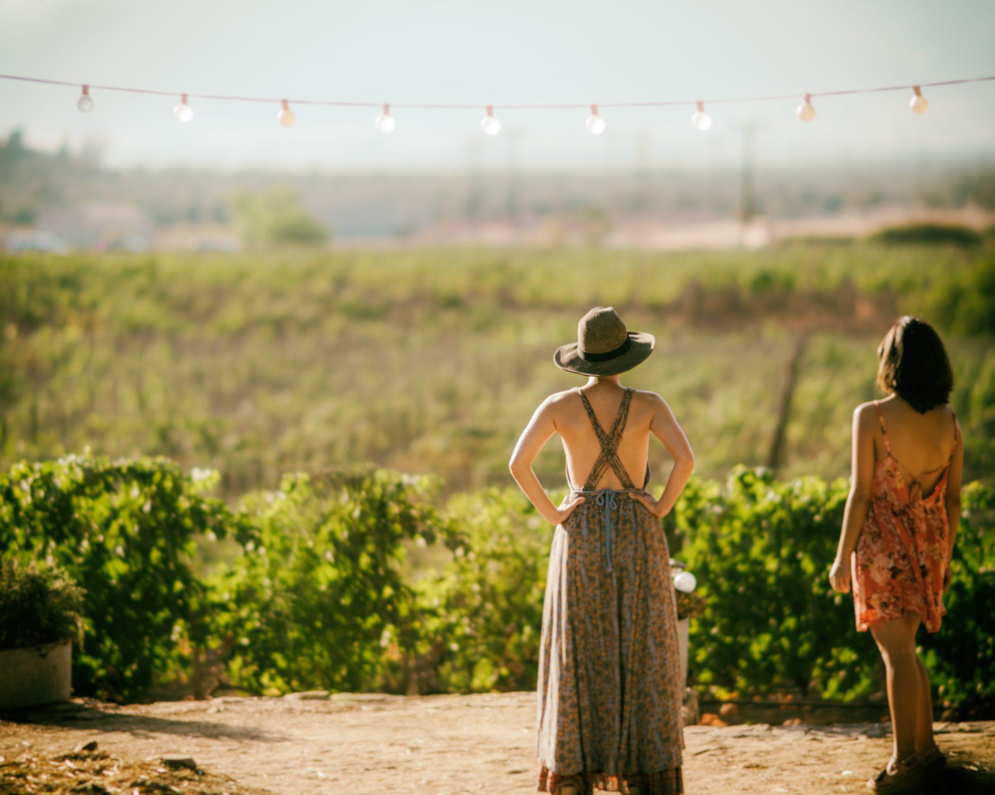 Dos mujeres observando los viñedos.